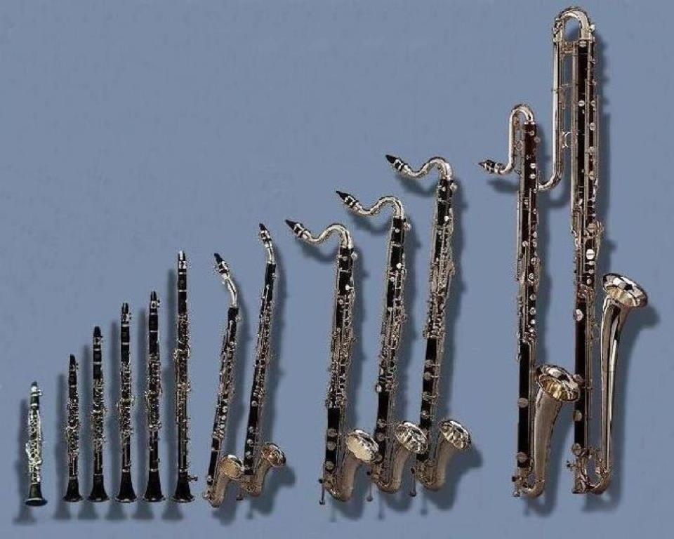 Different Types of Clarinets: A Student's Guide